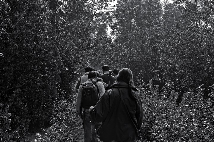 Tourists are trekking in the Sundarbans. Photo by Mohammad Mustafizur Rahman. Used with permission.